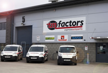 Factor Focus: TM Factors