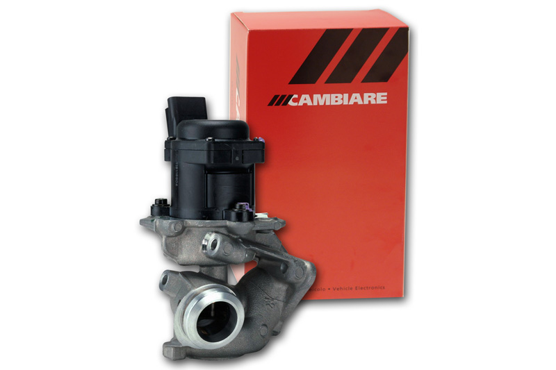 Cambiare EGR Valve VE360038 Next working day to UK
